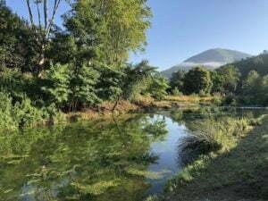 River fishing campsite Rennes-les-Bains
